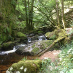 wandelen langs de gorges in de Morvan